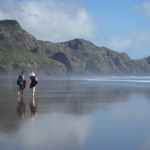 travel new zealands beaches