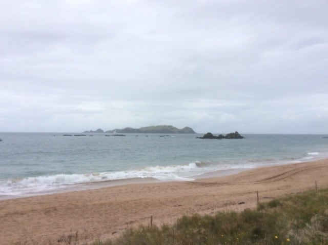 Absolute Beach Front - Tauranga Bay Campsite