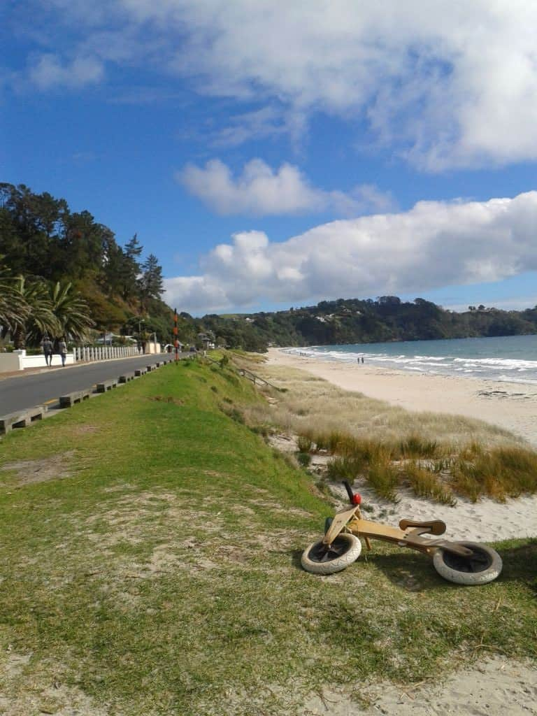 Beautiful Beach at Waiheke