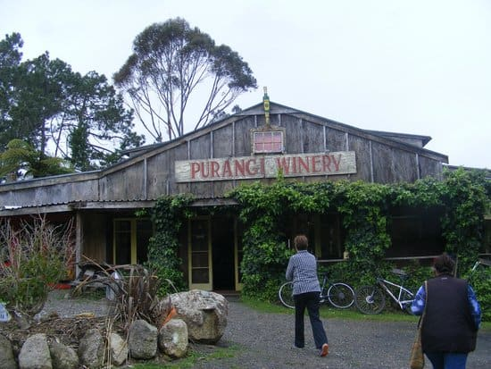 Purangi Winery - Best Pizza's!