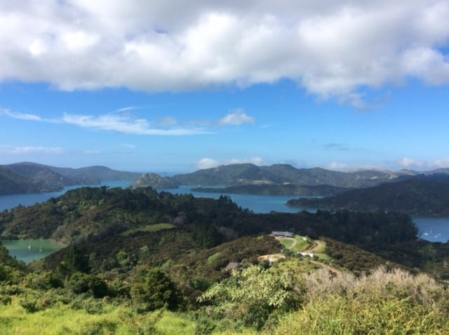 Whangaroa Harbour at its best