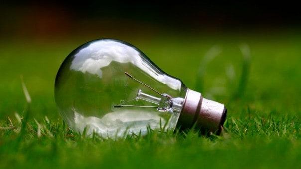 lightbulb going nz