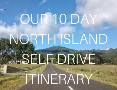 Our 10 day North Island Self Drive Itinerary