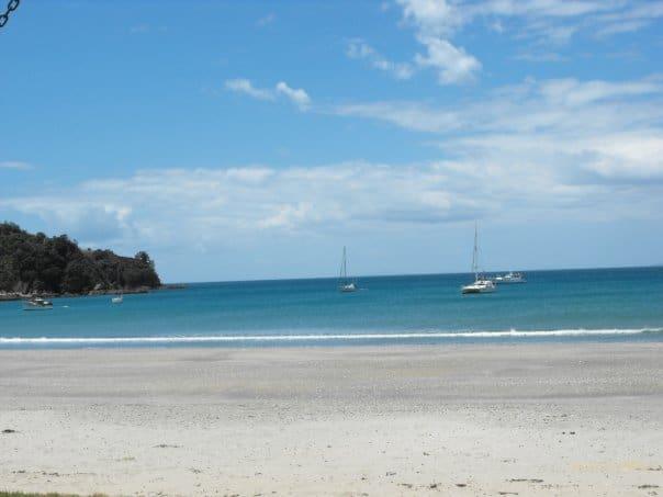 waiheke beach Going NZ