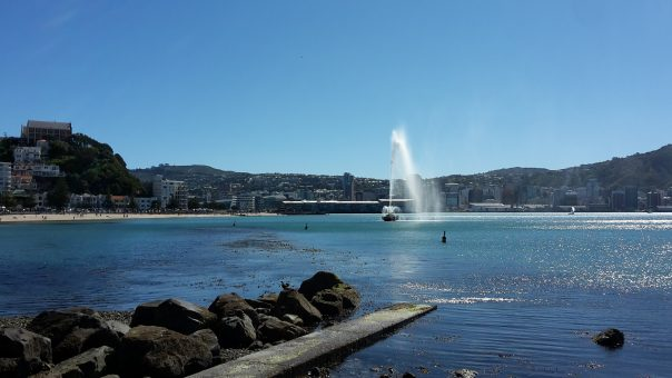 Wellington Oriental Parade