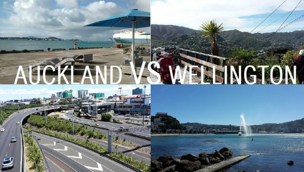 WELLINGTON VS AUCKLAND
