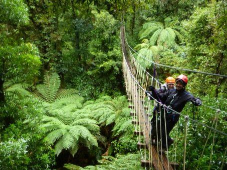 Canopy Tour Rotorua