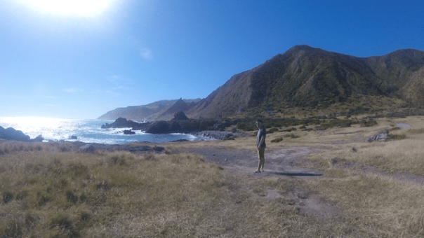 Watching the seal at Cape Palliser