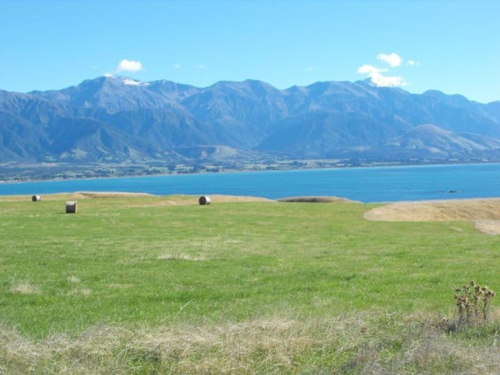 kaikoura goingnz