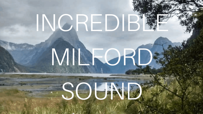 Milford Sound is Magical– even in the rain!